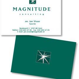 Magnitude Consulting